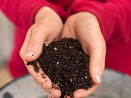 Organic Soil Mixes & Fertilizers